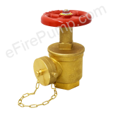 Replacement Valves
