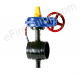 "Aleum 2 1/2"" Butterfly Valve w/ Open Tamper, Grooved"
