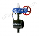 "Aleum 2 1/2"" Butterfly Valve w/ Closed Tamper, Grooved"
